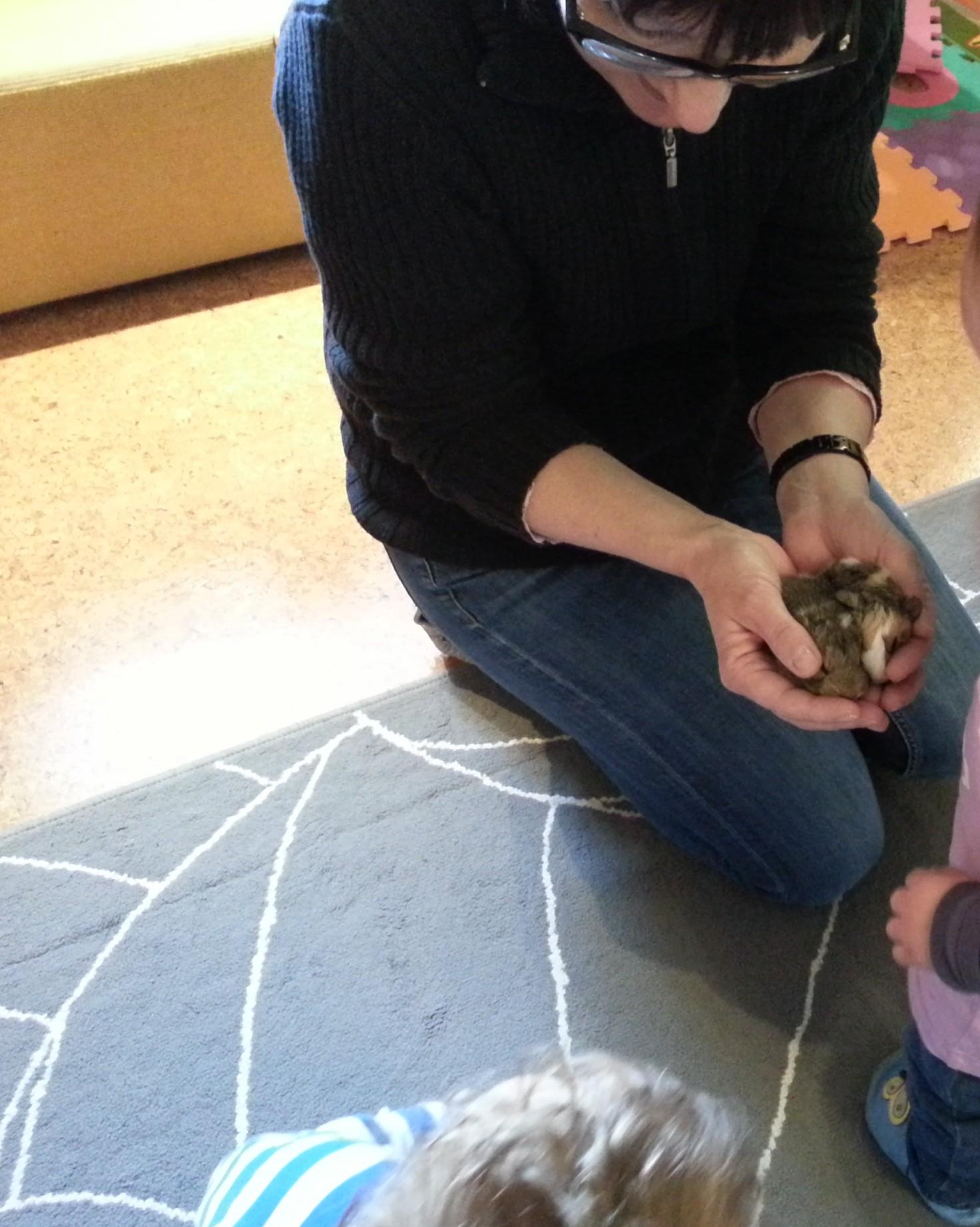 Vorsichtigen Umgang mit Tierbabys lernen