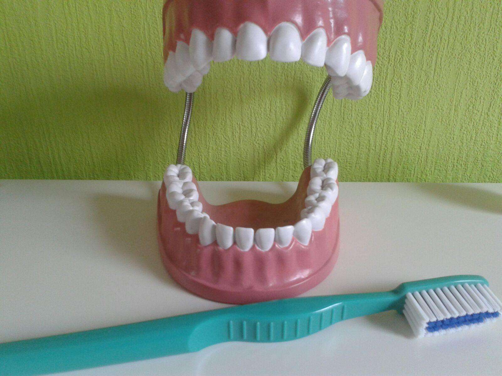 Themenwoche: Gesunde Zähne