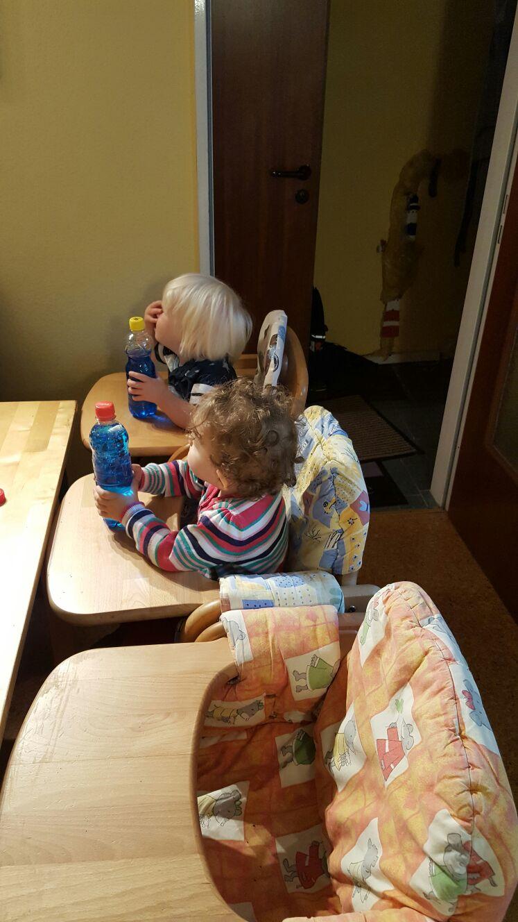 Quallen-Aquarium für jedes Tageskind