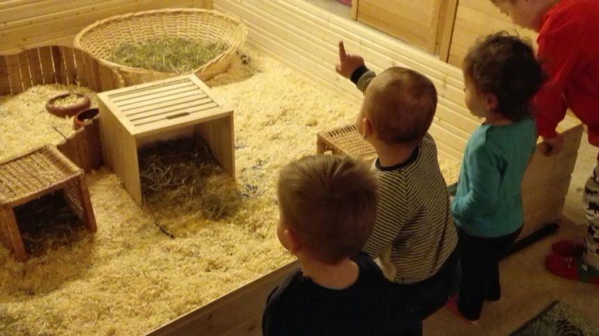 Tierpatenschaften für die Tageskinder