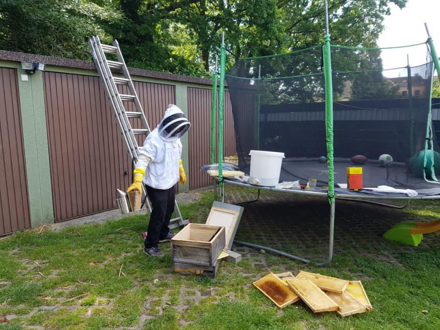 Bienenkurs mit der KiTa St. Marien